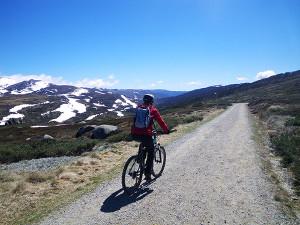 arlberg-ski-club-charlotte-pass-summer-mountain-bike